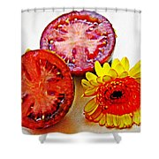 Tomato And Daisy 2 Shower Curtain by Sarah Loft