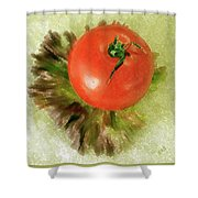 Tomato And Lettuce Shower Curtain