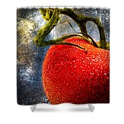 Tomato On A Vine Shower Curtain