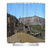 Tomboy History Shower Curtain