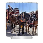 Tombstone Stagecoach 2 Shower Curtain