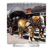 Tombstone Wagon Shower Curtain