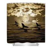 Tomorrow Is Another Day Shower Curtain