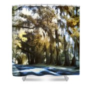 Tomotley Plantation Backroad Shower Curtain