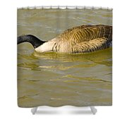 Tongue In Goose I Shower Curtain