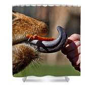 Carrots Are Good For You Shower Curtain