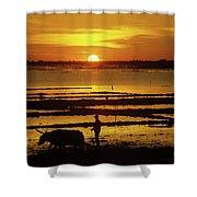 Tonle Sap Sunrise 01 Shower Curtain