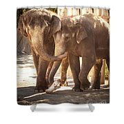 Tons Of Fun Shower Curtain