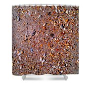 Tons Of Tiny Shells Shower Curtain