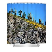 Tonto Ridge 16112 2 Shower Curtain