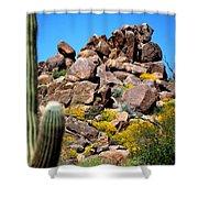 Tonto Saguaro Rocks 10189 Shower Curtain