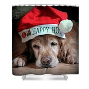 Too Much Eggnog Shower Curtain by Karen Wiles
