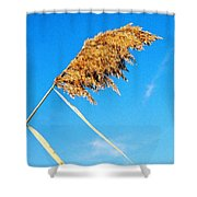 Top Heavy Shower Curtain