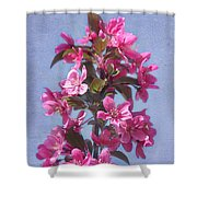 Top Of The Apple Tree Shower Curtain