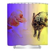 To See It All On Top Of The Dogs Shower Curtain
