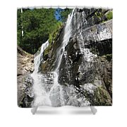 Top Part Of Silver Falls Shower Curtain