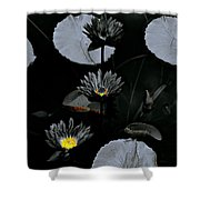 Torchlight Water Flowers Shower Curtain
