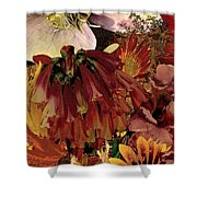 Torremolinos Left Shower Curtain