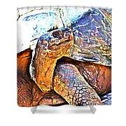 Tortoise Gouache Shower Curtain