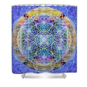 Torusphere Synthesis Interdimensioning Soulin Iv Shower Curtain