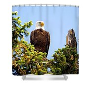 Totem Eagle Shower Curtain