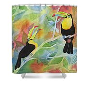 Toucan Play At This Game Shower Curtain