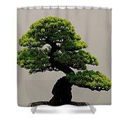 Touch Of Bonsai Shower Curtain