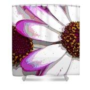 Touch Of Pink Osteospermum Trio B Shower Curtain