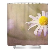 Touch Of Purple Shower Curtain
