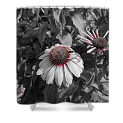 Touch Of Red Invite Shower Curtain