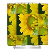 Touch Of Yellow  Shower Curtain
