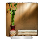 Towels And Bamboo Shower Curtain
