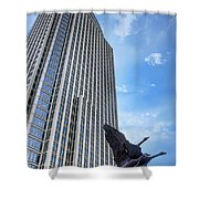 Tower And Geese Shower Curtain