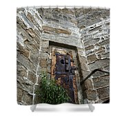 Tower Door Shower Curtain