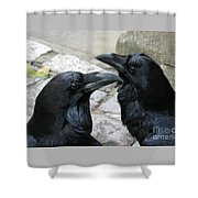 Tower Ravens Shower Curtain