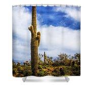 Towering Saguaro Shower Curtain