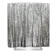 C And O Towpath Blizzard Shower Curtain