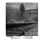 Tracks And Trees Shower Curtain