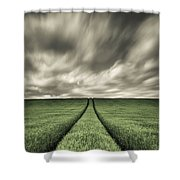 Tracks Shower Curtain by Dave Bowman