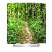 Trail Shower Curtain