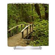 Trail Bridge Toketee 1 Shower Curtain