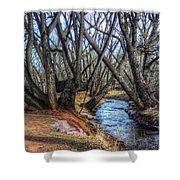 Trail By Fountain Creek Winter Shower Curtain