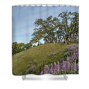Trail Of Lupine Shower Curtain