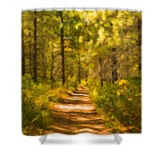 Trail Through The Woods Shower Curtain
