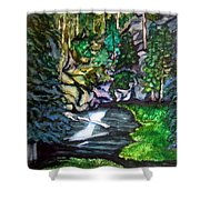 Trail To Broke-off Shower Curtain