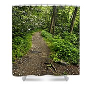 Trail To Chimney Tops - D005669a Shower Curtain