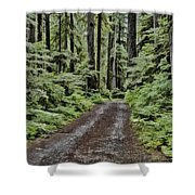 Trail To Jaw Bone Flats Shower Curtain