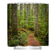 trail to Lower Lewis Falls Shower Curtain