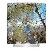 Trailhead Area In Andreas Canyon In Indian Canyons-ca Shower Curtain