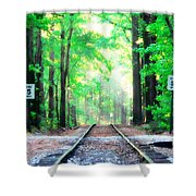 Train Tracks In Forest Shower Curtain
